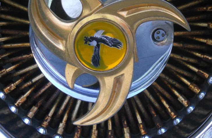 Sporty Wheel