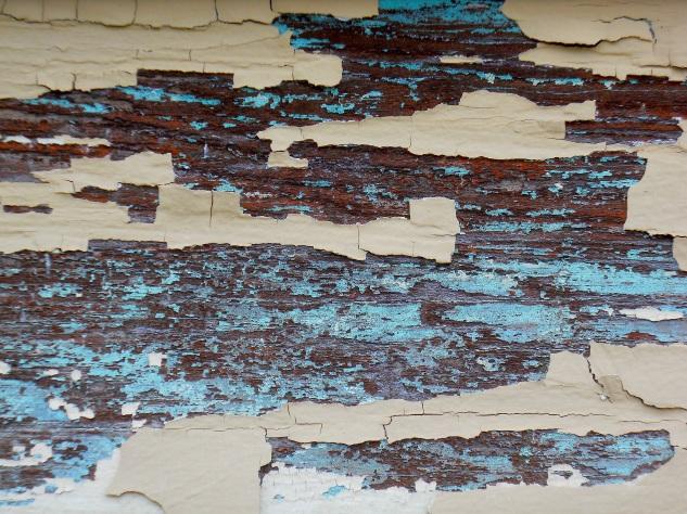 Paint Flakes