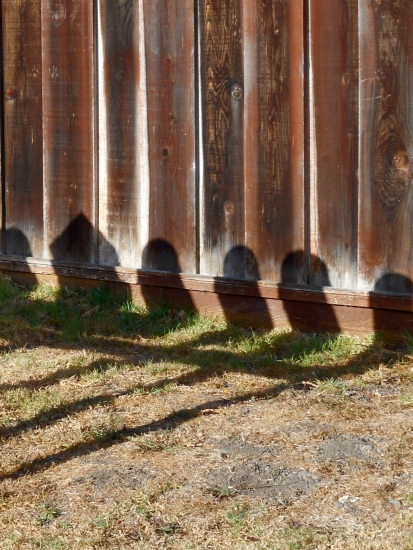 Mailbox Shadows